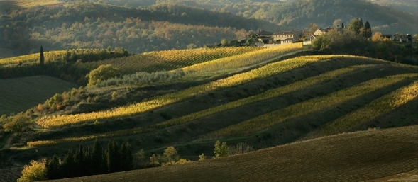 wine_tuscany_chianti_page