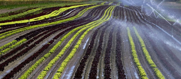 agriculture_page